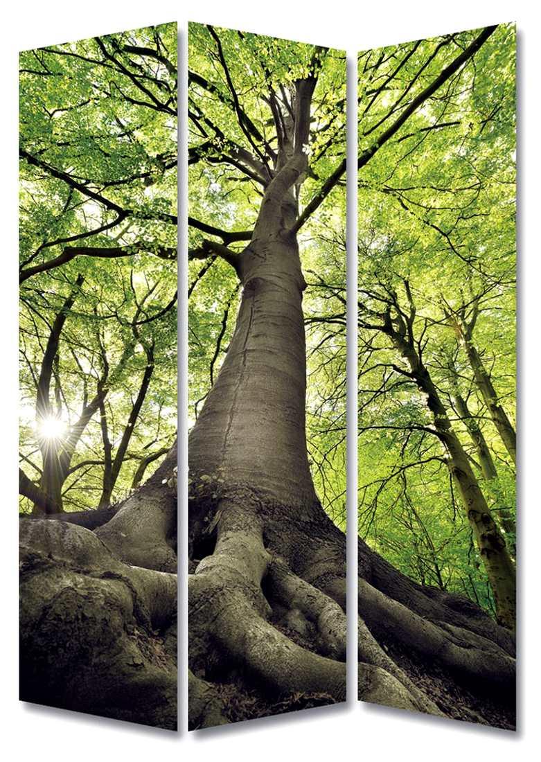 Biombo bosque