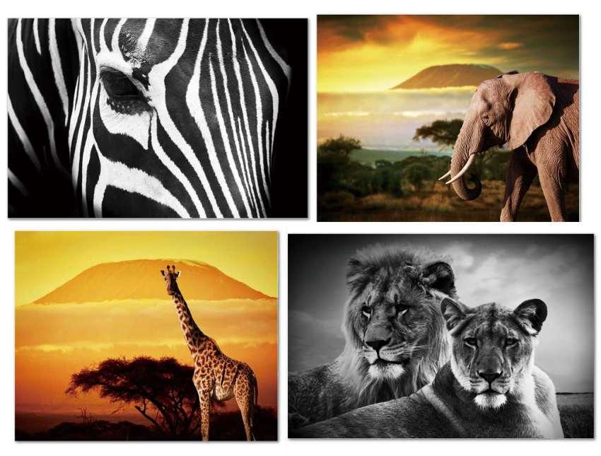 Lienzos fotoimpresos con animales