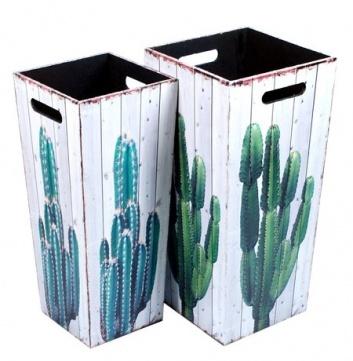 Paragüero con cactus
