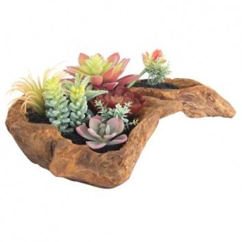 Jardín de cactus de resina