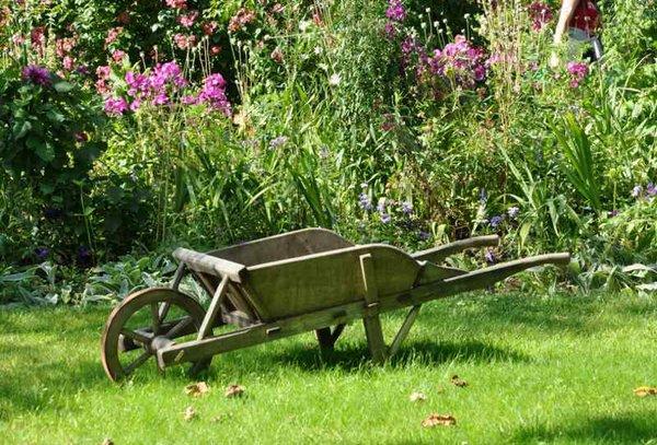 Jardín sin alfombra